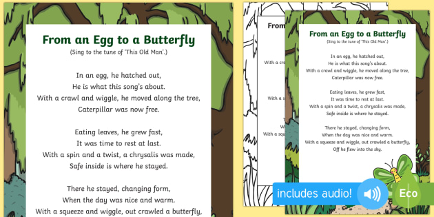 From an Egg to a Butterfly Song - butterfly life cycle, caterpillar, butterfly