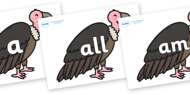 Foundation Stage 2 Keywords on Vultures - FS2, CLL, keywords, Communication language and literacy,  Display, Key words, high frequency words, foundation stage literacy, DfES Letters and Sounds, Letters and Sounds, spelling