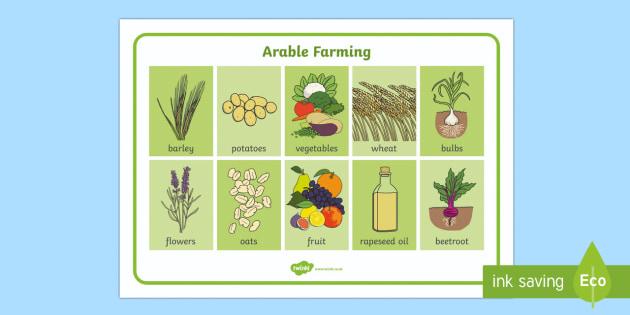 Arable Farming Word Mat
