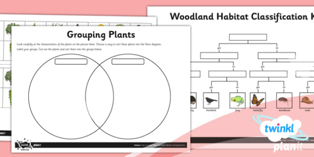 Science: Living Things and Their Habitats Year 4 Home Learning Tasks