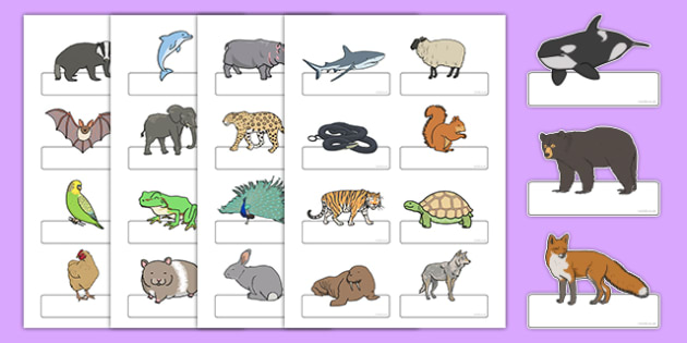 Editable Self Registration Labels (Animals) - Self registration, register, animals, animal, editable, labels, registration, child name label, printable labels
