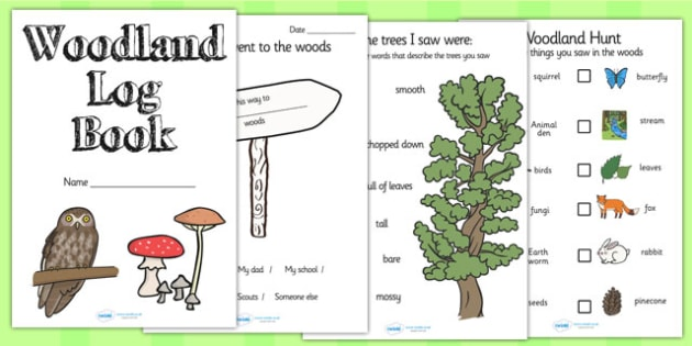 Woodland Log Activity Book - woods, woodland, woodland activities