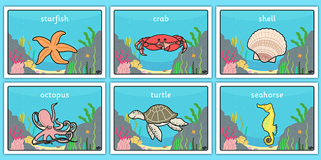 Under the Sea Class Group Signs - Sea life, sea creatures, group signs, group labels, group table signs, table sign, teaching groups, class group, class groups, table label