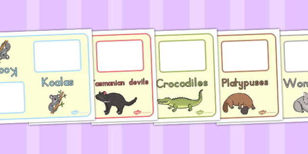 Australian Animal Group Table Signs - australia, group, table