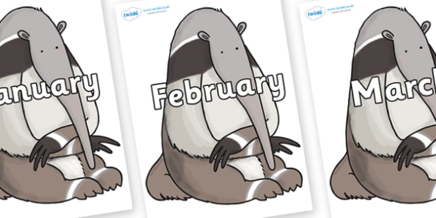 Months of the Year on Anteater to Support Teaching on The Great Pet Sale - Months of the Year, Months poster, Months display, display, poster, frieze, Months, month, January, February, March, April, May, June, July, August, September