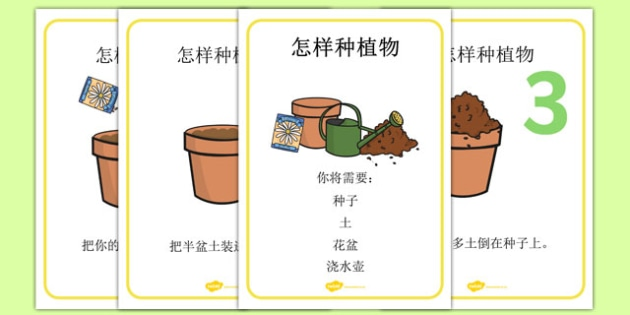 How to Grow a Plant Display Posters Chinese Mandarin - chinese mandarin, Plant, Growth, Topic, Foundation stage, Flower, knowledge and understanding of the world, investigation, living things, labelling, labelling plant