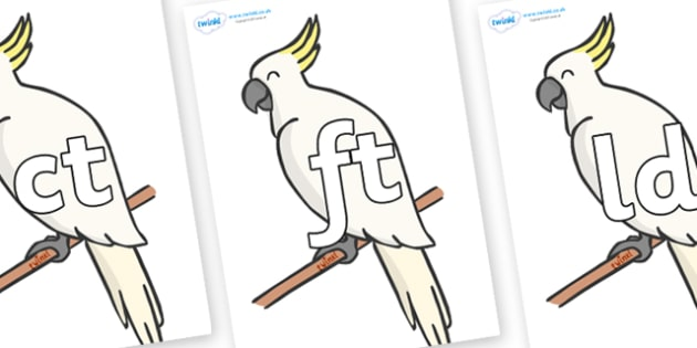 Final Letter Blends on Cockatoos - Final Letters, final letter, letter blend, letter blends, consonant, consonants, digraph, trigraph, literacy, alphabet, letters, foundation stage literacy