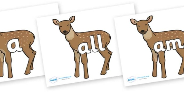 Foundation Stage 2 Keywords on Fawns - FS2, CLL, keywords, Communication language and literacy,  Display, Key words, high frequency words, foundation stage literacy, DfES Letters and Sounds, Letters and Sounds, spelling