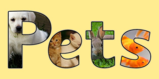 Pets Photo Display Lettering - pets, photo, display lettering, display, lettering, photo lettering