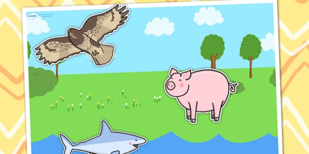 Large Animal Sorting Background - sort, order, animals, ordering