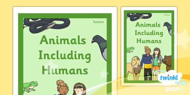 science animals including humans year 1 unit book cover