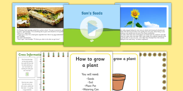 EYFS Sam's Seeds Story PowerPoint and Resource Pack - EYFS, Early years, plants and growth, growing, life cycles, Understanding the world