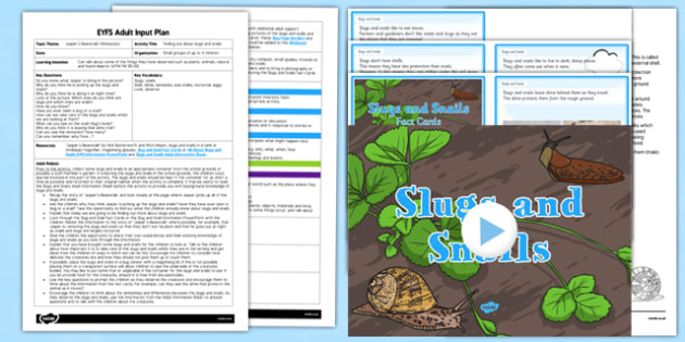 Finding Out About Slugs and Snails Adult Input Plan and Resource Pack to Support Teaching on Jasper's Beanstalk - Understanding the world, minibeasts, Mink Inkpen, Nick Butterworth, plants and growth