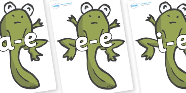 Modifying E Letters on Froglets - Modifying E, letters, modify, Phase 5, Phase five, alternative spellings for phonemes, DfES letters and Sounds