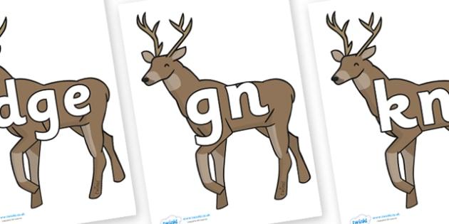 Silent Letters on Stags - Silent Letters, silent letter, letter blend, consonant, consonants, digraph, trigraph, A-Z letters, literacy, alphabet, letters, alternative sounds