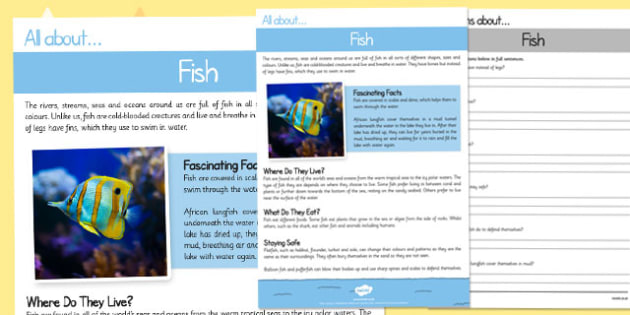 Fish Differentiated Reading Comprehension Activity - fish, differentiated