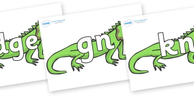 Silent Letters on Iguanas - Silent Letters, silent letter, letter blend, consonant, consonants, digraph, trigraph, A-Z letters, literacy, alphabet, letters, alternative sounds