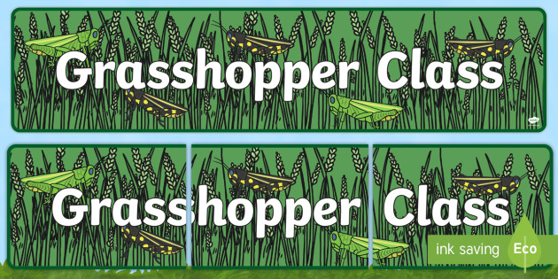 Grasshopper Themed Classroom Display Banner - Themed banner, banner, display banner, Classroom labels, Area labels, Poster, Display, Areas