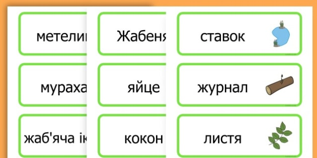 Life Cycle Word Cards - life cycles, lifecycle, visual aid, words - Ukrainian