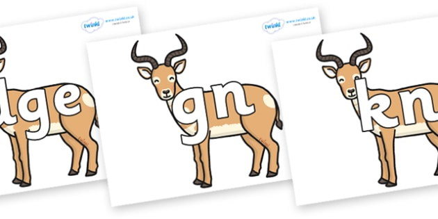 Silent Letters on Antelopes - Silent Letters, silent letter, letter blend, consonant, consonants, digraph, trigraph, A-Z letters, literacy, alphabet, letters, alternative sounds