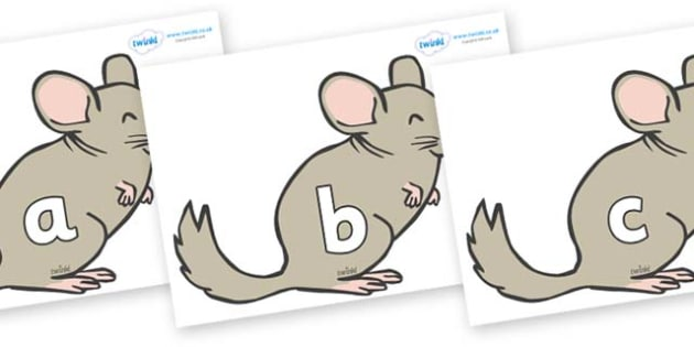 Phase 2 Phonemes on Chinchillas - Phonemes, phoneme, Phase 2, Phase two, Foundation, Literacy, Letters and Sounds, DfES, display