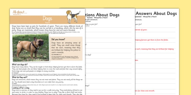 Dogs Reading Comprehension Polish Translation - polish, Reading comprehension, dog, find, locate, read, comprehend, fact, title, fact file, information, question