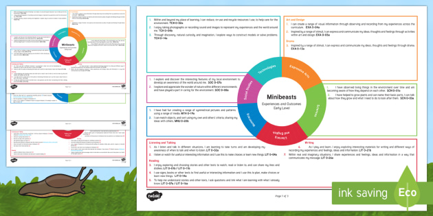 Minibeasts Early Level CfE Interdisciplinary Topic Web - Interdisciplinary Topic Web (Social Studies), cross curricular, plan, planner, planning, overview, I