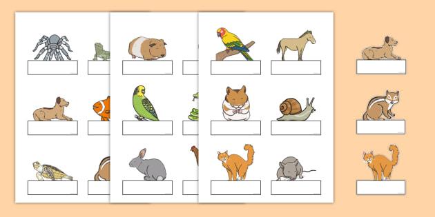 Editable Self Registration Labels (Pets) - Self registration, register, Pets, editable, labels, registration, child name label, printable labels, cat, dog, rabbit, mouse, guinea pig, rat, hamster, gerbil, horse, puppy, kitten, snake, chinchilla, snai