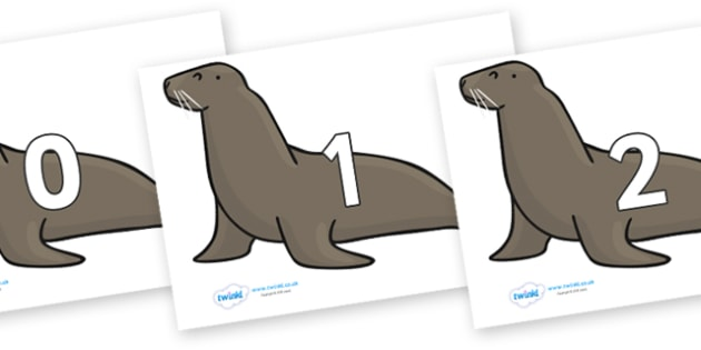 Numbers 0-50 on Sealions - 0-50, foundation stage numeracy, Number recognition, Number flashcards, counting, number frieze, Display numbers, number posters