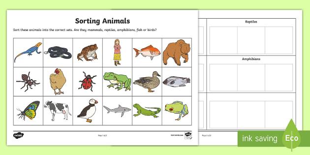 Sorting Animals into Sets Worksheet - worksheet, sorting, animals