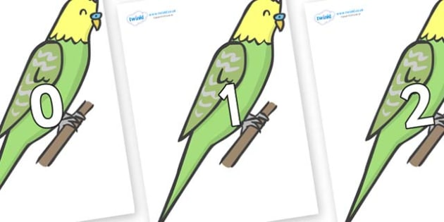 Numbers 0-100 on Budgies - 0-100, foundation stage numeracy, Number recognition, Number flashcards, counting, number frieze, Display numbers, number posters