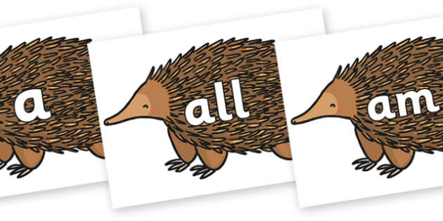 Foundation Stage 2 Keywords on Echidna - FS2, CLL, keywords, Communication language and literacy,  Display, Key words, high frequency words, foundation stage literacy, DfES Letters and Sounds, Letters and Sounds, spelling
