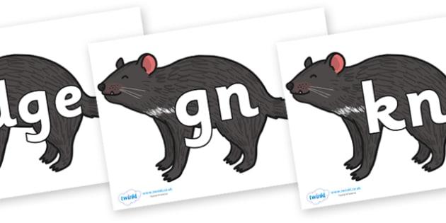 Silent Letters on Tasmanian Devil - Silent Letters, silent letter, letter blend, consonant, consonants, digraph, trigraph, A-Z letters, literacy, alphabet, letters, alternative sounds