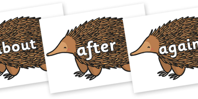 KS1 Keywords on Echidna - KS1, CLL, Communication language and literacy, Display, Key words, high frequency words, foundation stage literacy, DfES Letters and Sounds, Letters and Sounds, spelling
