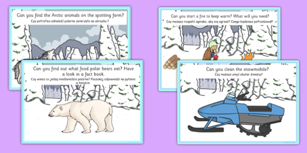 Arctic Explorer Role Play Challenge Cards Polish Translation - polish, arctic, explorer, role play, challenge, cards