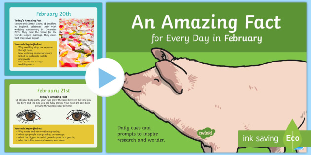 Amazing Fact a Day February PowerPoint - research, prompts, facts, factoids, trivia, did you know