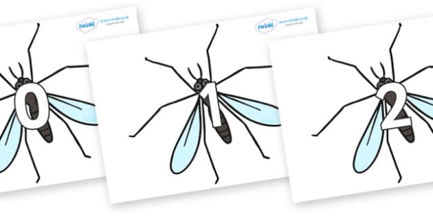 Numbers 0-31 on Crane Flies - 0-31, foundation stage numeracy, Number recognition, Number flashcards, counting, number frieze, Display numbers, number posters