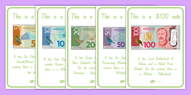 New Zealand Money Notes A4 Display Poster