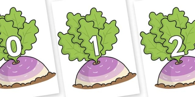 Numbers 0-50 on Turnip in the Ground - 0-50, foundation stage numeracy, Number recognition, Number flashcards, counting, number frieze, Display numbers, number posters