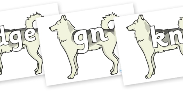 Silent Letters on Huskies - Silent Letters, silent letter, letter blend, consonant, consonants, digraph, trigraph, A-Z letters, literacy, alphabet, letters, alternative sounds