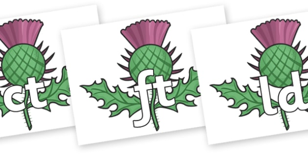 Final Letter Blends on Thistles - Final Letters, final letter, letter blend, letter blends, consonant, consonants, digraph, trigraph, literacy, alphabet, letters, foundation stage literacy