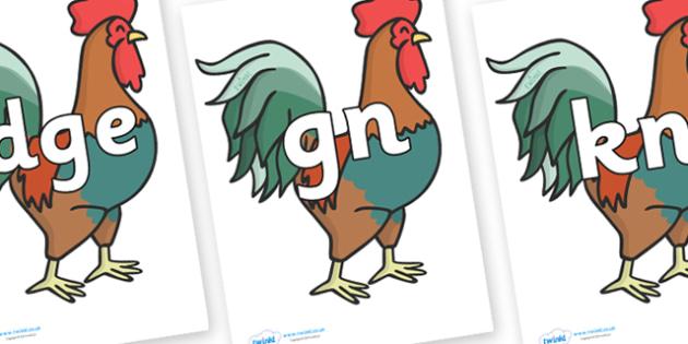 Silent Letters on Cockerels - Silent Letters, silent letter, letter blend, consonant, consonants, digraph, trigraph, A-Z letters, literacy, alphabet, letters, alternative sounds