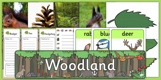 Woodland Role Play Pack - woodland, role play, pack, roleplay, role play pack