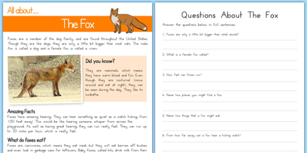 Fox Reading Comprehension - usa, america, Reading comprehension, fox, find, locate, read, comprehend, fact, title, fact file, information, question