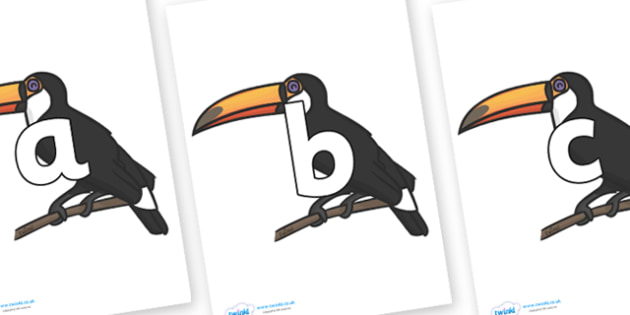 Phoneme Set on Toucans - Phoneme set, phonemes, phoneme, Letters and Sounds, DfES, display, Phase 1, Phase 2, Phase 3, Phase 5, Foundation, Literacy