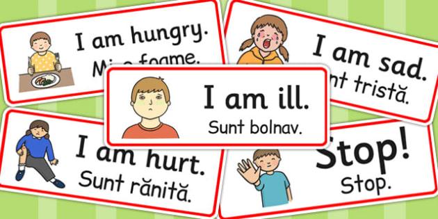 Survival Vocabulary Cards EAL Romanian Translation - romanian, eal