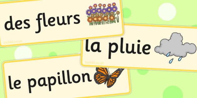 French Spring Word Cards - french, spring, word cards, word, card