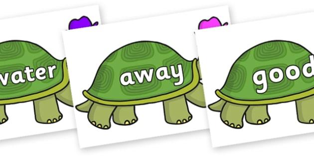 Next 200 Common Words on Tortoise - Next 200 Common Words on  - DfES Letters and Sounds, Letters and Sounds, Letters and sounds words, Common words, 200 common words
