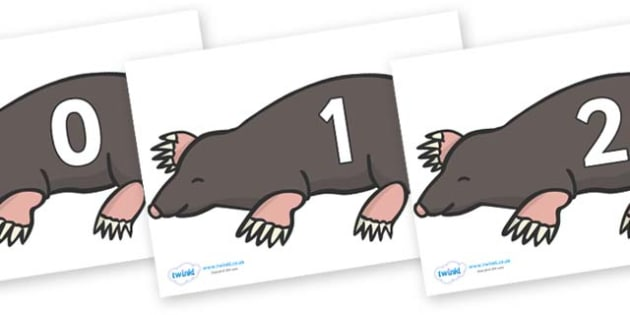 Numbers 0-50 on Moles - 0-50, foundation stage numeracy, Number recognition, Number flashcards, counting, number frieze, Display numbers, number posters