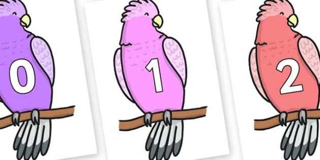 Numbers 0-31 on Galah - 0-31, foundation stage numeracy, Number recognition, Number flashcards, counting, number frieze, Display numbers, number posters